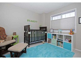 Photo 15: 13042 DOUGLAS RIDGE Grove SE in Calgary: Douglas Rdg_Dglsdale Residential Detached Single Family for sale : MLS®# C3653253