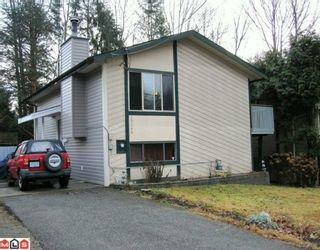 Photo 1: 35266 MCKEE Road in Abbotsford: Abbotsford East House for sale : MLS®# F1000821