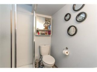 Photo 23: 639 CEDARILLE Way SW in Calgary: Cedarbrae House for sale : MLS®# C4096663
