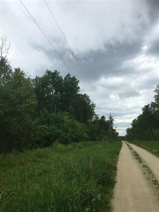 Photo 3: 26 Moon Shadow Road in Alonsa: Lake Manitoba Narrows Residential for sale (R19)  : MLS®# 1912160