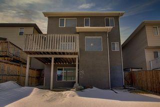 Photo 49: 12 Panamount Rise NW in Calgary: Panorama Hills Detached for sale : MLS®# A1077246