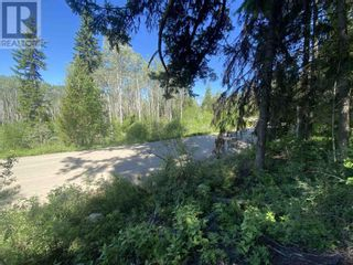 Photo 7: LOT 4 WILCOX ROAD in Forest Grove: Vacant Land for sale : MLS®# R2595645