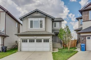 Photo 1: 51 Skyview Springs Cove NE in Calgary: Skyview Ranch Detached for sale : MLS®# C4186074