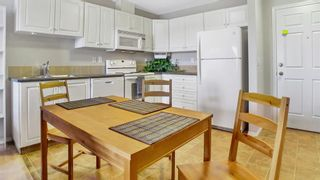 Photo 7: 322 260 Shawville Way SE in Calgary: Shawnessy Apartment for sale : MLS®# A1073595