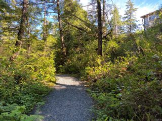 Photo 12: 851 Lorne White Pl in : PA Ucluelet Land for sale (Port Alberni)  : MLS®# 878308