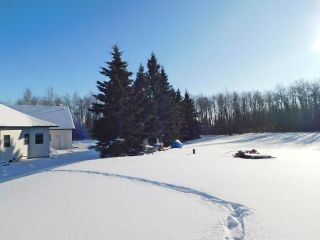 Photo 48: 57126 Rg Rd 233: Rural Sturgeon County House for sale : MLS®# E4227570