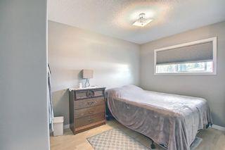 Photo 19: 5305 46 Street: Rimbey Detached for sale : MLS®# A1134871