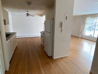 Photo 24: 206 10023 164 Street in Edmonton: Zone 22 Condo for sale : MLS®# E4247123
