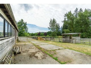 """Photo 39: 3003 208 Street in Langley: Brookswood Langley House for sale in """"Brookswood Fernridge"""" : MLS®# R2557917"""