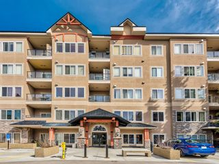 Photo 7: 330 20 Discovery Ridge Close SW in Calgary: Discovery Ridge Apartment for sale : MLS®# A1100608