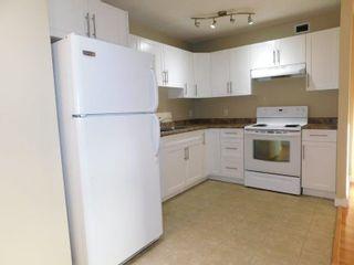 Photo 4: 509 9710 105 Street in Edmonton: Zone 12 Condo for sale : MLS®# E4236904