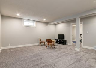 Photo 34: 6207 84 Street NW in Calgary: Silver Springs Detached for sale : MLS®# A1147522