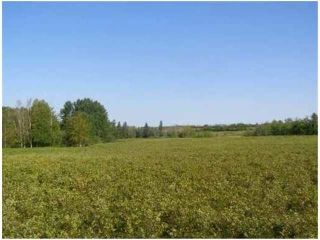 Photo 8: SW COR TWP RD 534 & RR 222: Rural Strathcona County Rural Land/Vacant Lot for sale : MLS®# E4251108