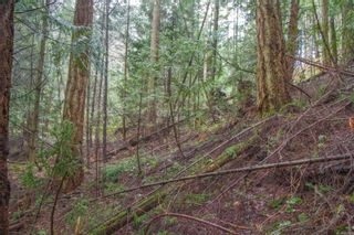 Photo 18: 2604 Yardarm Rd in : GI Pender Island Land for sale (Gulf Islands)  : MLS®# 863927