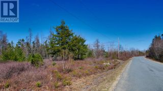 Photo 5: Acreage Grimm Road in Grimms Settlement: Vacant Land for sale : MLS®# 202108229