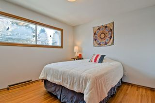 Photo 19: 105 Langton Drive SW in Calgary: North Glenmore Park Detached for sale : MLS®# A1066568