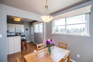 Photo 16: 145 Lake Ridge Road in Winnipeg: Crestview Residential for sale (5H)  : MLS®# 202009566