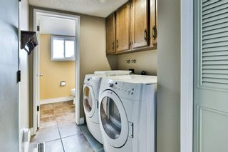 Photo 24: 56 MACEWAN GLEN Drive NW in Calgary: MacEwan Glen House for sale : MLS®# C4173721