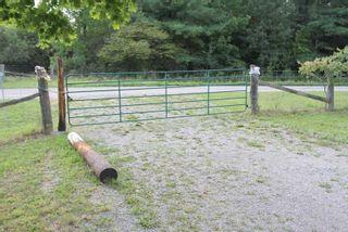 Photo 14: 1564 Prospect Road in Kawartha Lakes: Rural Eldon Property for sale : MLS®# X5363567