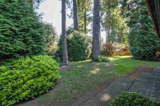"Photo 19: 11287 SUSSEX Place in Delta: Sunshine Hills Woods House for sale in ""Sunshine Hills"" (N. Delta)  : MLS®# R2172048"