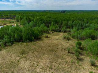 Photo 12: TWP 624 Rge Rd 423: Rural Bonnyville M.D. Rural Land/Vacant Lot for sale : MLS®# E4227702