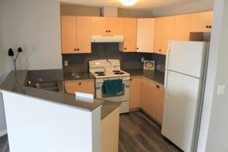 Photo 7: 2216 10 Prestwick Bay SE in Calgary: McKenzie Towne Apartment for sale : MLS®# A1101175