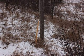 Photo 2: Lot 22 Maritime Road in Kawartha Lakes: Coboconk Property for sale : MLS®# X3413160