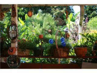 Photo 17: 8041 12TH AV in Burnaby: East Burnaby House for sale (Burnaby East)  : MLS®# V1101813