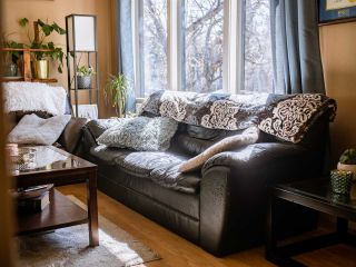 Photo 11: 9207 91 Street in Edmonton: Zone 18 House for sale : MLS®# E4239463