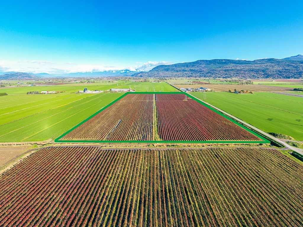 Main Photo: 4081 DIXON Road: Agri-Business for sale in Abbotsford: MLS®# C8035569