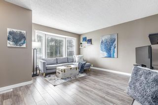 Photo 3: 132 Pineland Place NE in Calgary: Pineridge Detached for sale : MLS®# A1110576