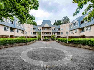 """Photo 20: 306 295 SCHOOLHOUSE Street in Coquitlam: Maillardville Condo for sale in """"Chateau Royale"""" : MLS®# R2466921"""