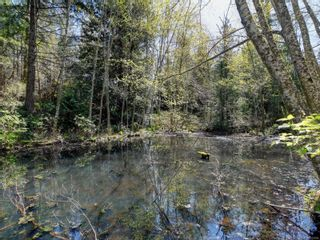 Photo 36: 11221 Hedgerow Dr in : NS Lands End House for sale (North Saanich)  : MLS®# 872694