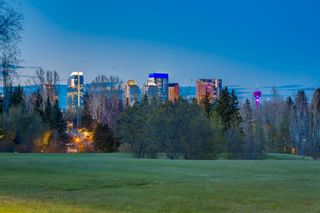 Photo 6: 3009 Champlain Street SW in Calgary: Upper Mount Royal Detached for sale : MLS®# A1105966
