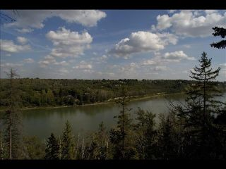 Photo 3: 4519 DONSDALE Drive in Edmonton: Zone 20 Vacant Lot for sale : MLS®# E4227514