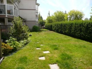 """Photo 2: 113 12769 72ND Avenue in Surrey: West Newton Condo for sale in """"Savoy"""" : MLS®# F2916546"""