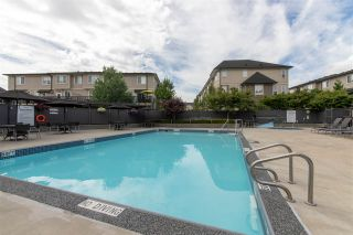 """Photo 20: 149 7938 209 Street in Langley: Willoughby Heights Townhouse for sale in """"Red Maple Park by Polygon"""" : MLS®# R2317037"""