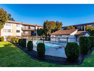 """Photo 24: 409 1909 SALTON Road in Abbotsford: Central Abbotsford Condo for sale in """"FOREST VILLAGE"""" : MLS®# R2535956"""