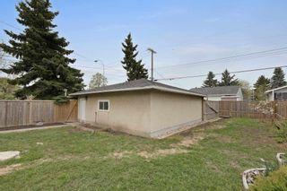 Photo 39: 10608 79 Street in Edmonton: Zone 19 House for sale : MLS®# E4246583