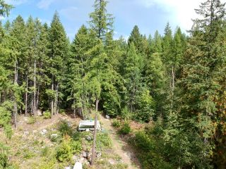 Photo 1: 1969 SANDY ROAD in Castlegar: Vacant Land for sale : MLS®# 2461033