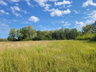 Photo 1: HWY 29 RR 175: Rural Lamont County Rural Land/Vacant Lot for sale : MLS®# E4260440