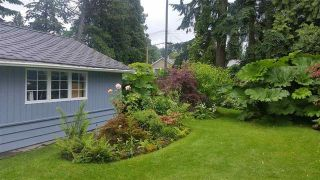 Photo 4: 14356 MELROSE Drive in Surrey: Bolivar Heights House for sale (North Surrey)  : MLS®# R2166216