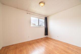 Photo 12: 217 Aboyne Place NE in Calgary: Abbeydale Semi Detached for sale : MLS®# A1104052