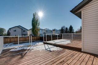 Photo 28: 125 Coventry Crescent NE in Calgary: Coventry Hills Detached for sale : MLS®# A1042180
