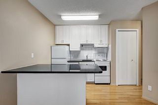Photo 11: 107 835 19 Avenue SW in Calgary: Lower Mount Royal Condo for sale : MLS®# C4117697