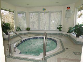 Photo 18: 33 11737 236 Street in Maple Ridge: Cottonwood MR Townhouse for sale : MLS®# R2033518