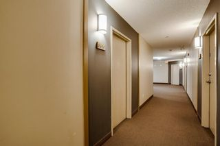 Photo 5: 3309 73 Erin Woods Court SE in Calgary: Erin Woods Apartment for sale : MLS®# A1100323