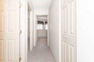 Photo 9: 334 4210 139 Avenue in Edmonton: Zone 35 Condo for sale : MLS®# E4261806