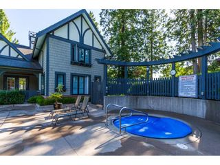 "Photo 19: 115 20875 80 Avenue in Langley: Willoughby Heights Townhouse for sale in ""PEPPERWOOD"" : MLS®# R2094825"