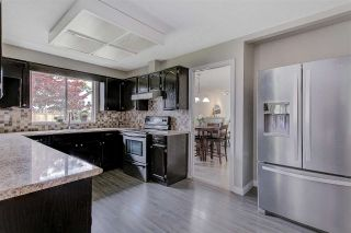 Photo 6: 11699 202B Street in Maple Ridge: Southwest Maple Ridge House for sale : MLS®# R2576008
